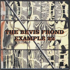 Bevis Frond - Example 22 (2015)